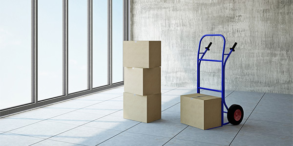 Why The Need For A Packer And Mover